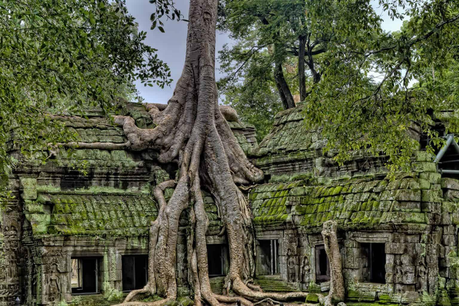 Cambodia for digital nomads
