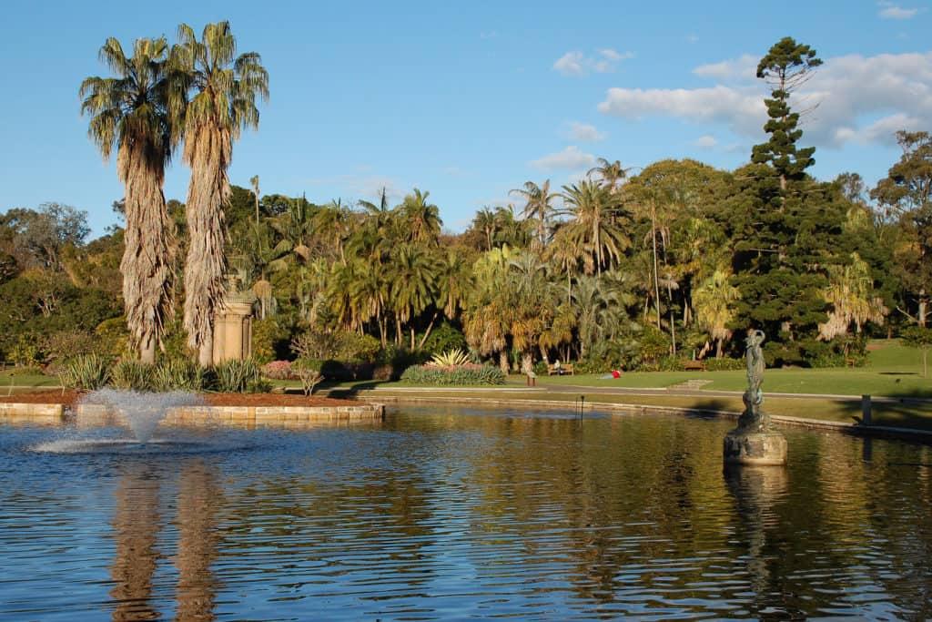 Sydney Royal Botanic Gardens lake